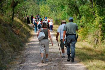 Pellegrini in cammino sul sentiero francescano nel 2011