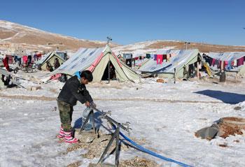 siria-profughi