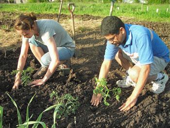Giovani impegnati in un corso di orticoltura