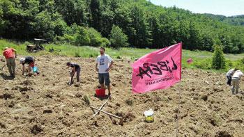 Volontari durante la raccolta delle patate a Pietralunga in un terreno gestito da Libera