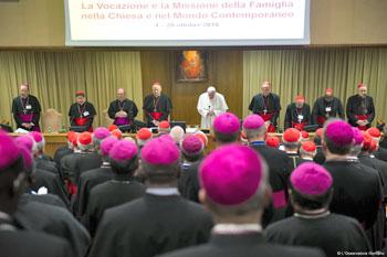 I sinodali raccolti in assemblea con papa Francesco