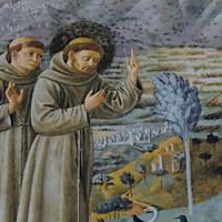 San Francesco predica agli uccelli, Benozzo Gozzoli, Montefalco