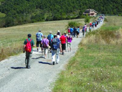 Cammini francescani umbri. I dati del 2018