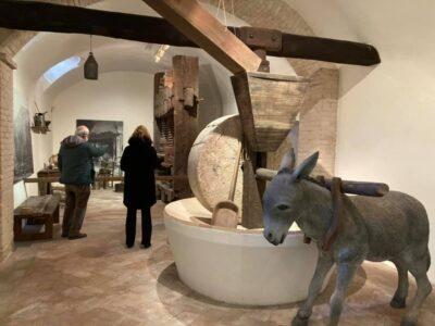 Una delle sale del Museo dell'Ulivo di Trevi