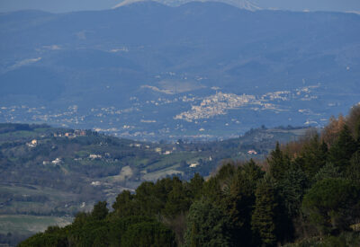 Valle spoletana con Trevi sullo sfondo