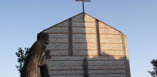 oratorio chiesa polymer