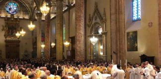 cammino sinodale